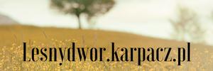 Leśny Dwór - pensjonat w Karpaczu